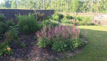 přírodní zahrada MŠ s dřevěnými prvky