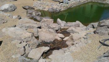 jezírko s přírodním kamenem